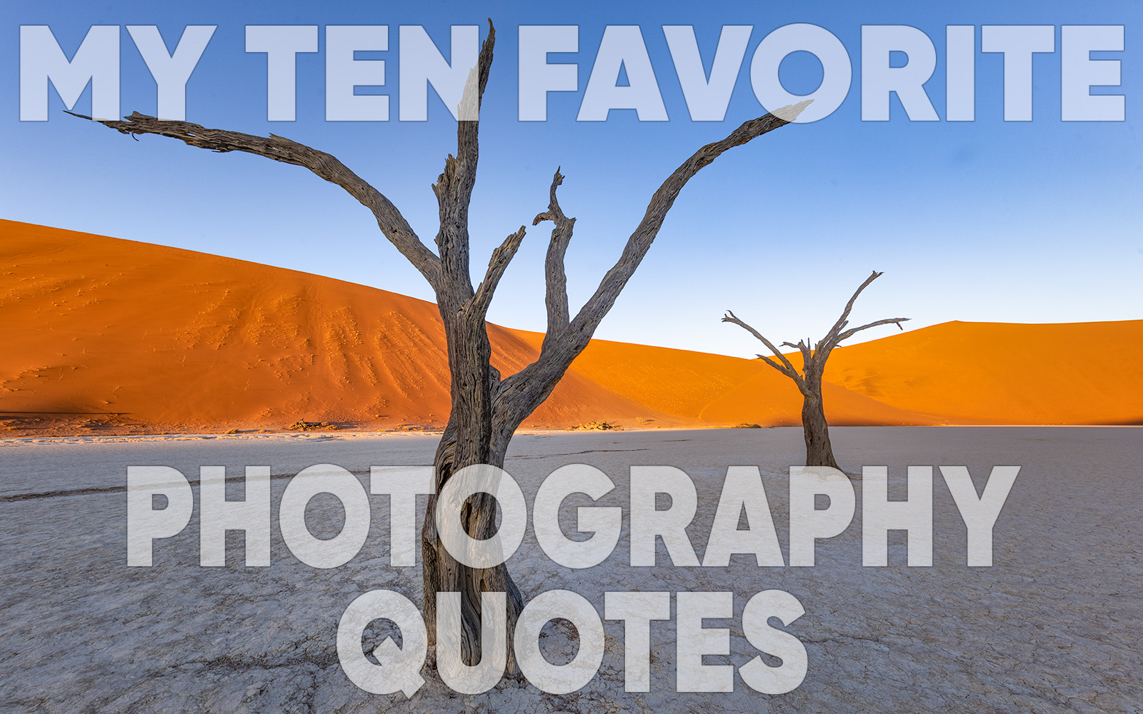 Ten Favorite Photography Quotes