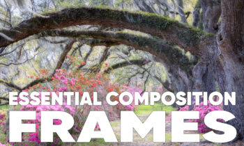 Essential Composition: Frames