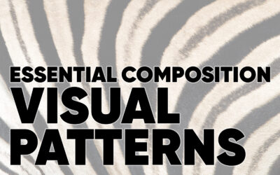 Essential Composition: Visual Patterns
